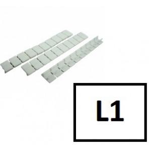 CK-L1
